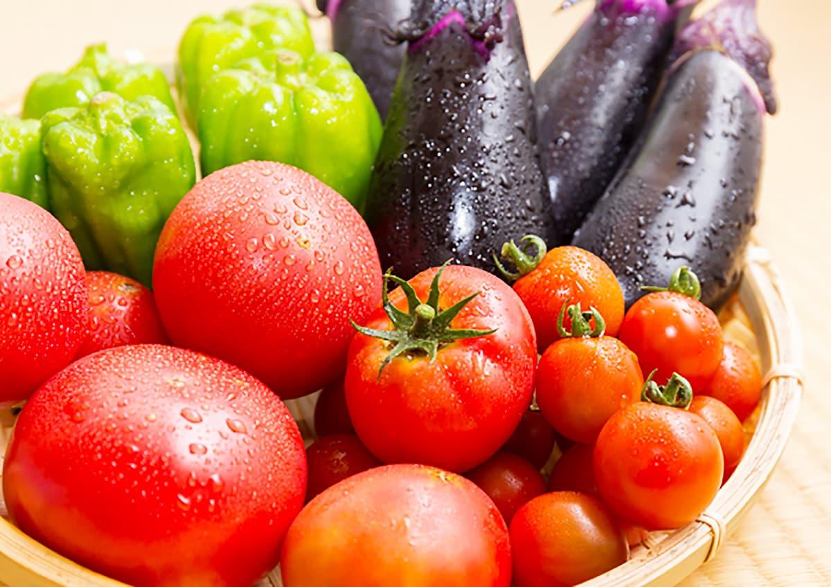 イメージ写真_新鮮な野菜