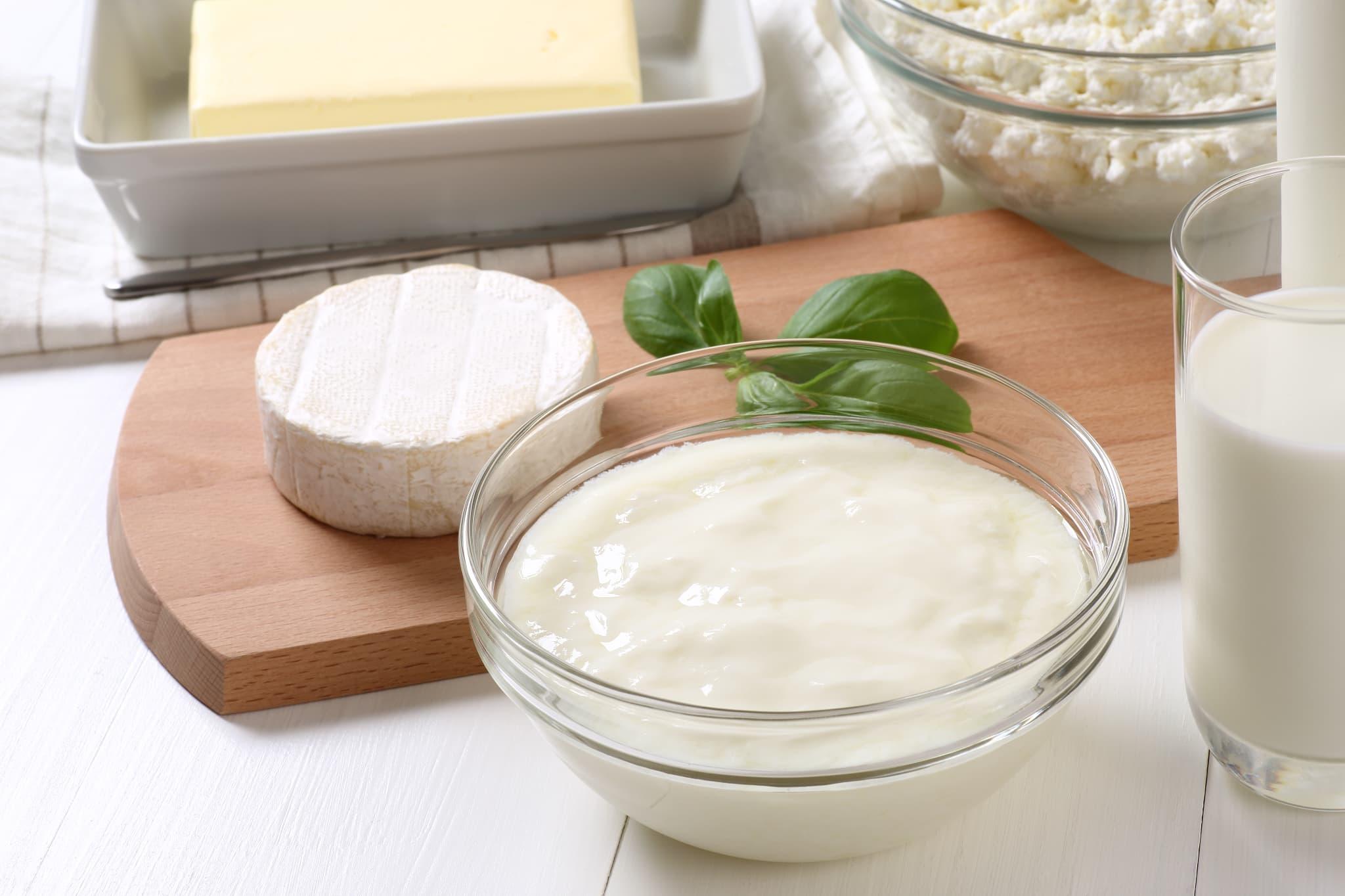 料理写真_ヨーグルトとチーズ