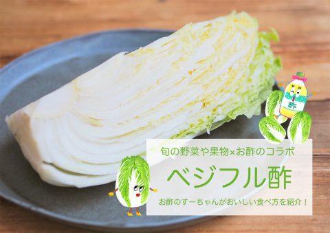 イメージ写真_タイトルと白菜とすーちゃんのイラスト